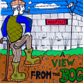 view from the bog revamp.jpg